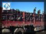 歡迎##長沙圓柱狀活性炭##公司