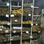 2021歡迎訪問##C7541-M是什么銅-對應什么材料##集團公司
